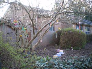 Our Enchanted Garden